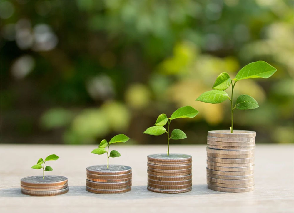 Green eco taxes – is it just a matter of time